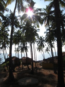 My First Week Backpacking in Goa