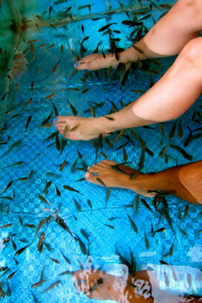 The fish massage in Siem Reap